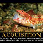 acquisitiondemotivator
