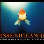 insignificancedemotivator