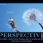 perspectivedemotivator