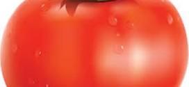 Тест: овощи на английском.