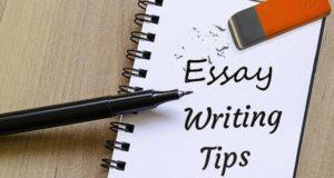 что такое эссе и как его писать