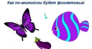 Как по-английски будет фиолетовый