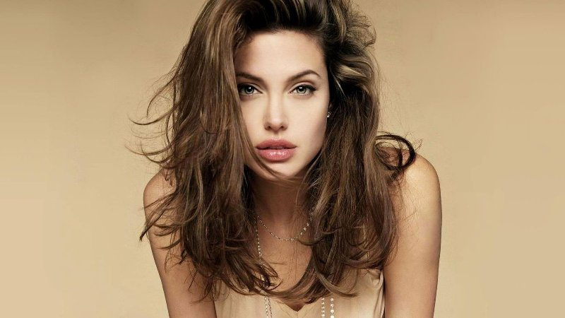 A Famous Person -Angelina Jolie