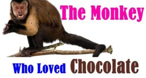 The Monkey Who Loved Chocolate