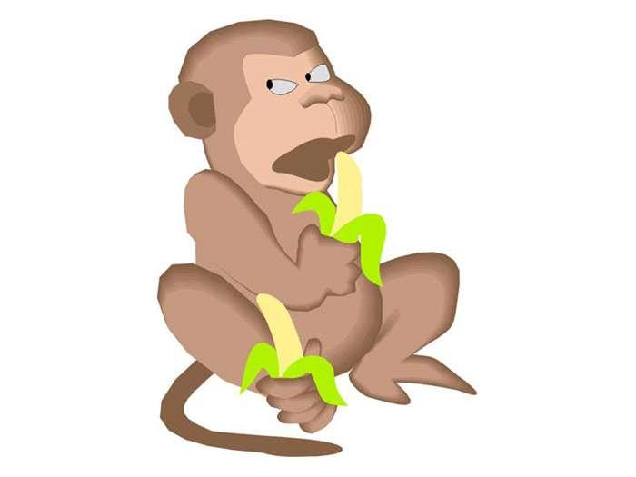 Why Bananas Belong to Monkeys